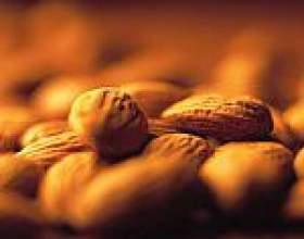 Мигдаль (мигдальні горіхи): склад, користь і властивості мигдалю, мигдальне масло фото
