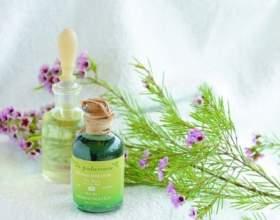 Ароматичні масла для здоров`я і краси фото