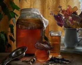 Чайний гриб для схуднення фото
