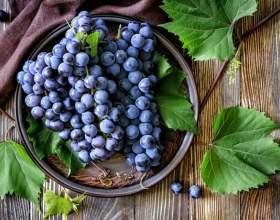 Що приготувати з винограду: рецепти фото