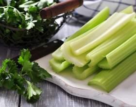 Дієтичний суп з селери для схуднення: рецепти, вживання, відгуки худевшіх і лікарів фото
