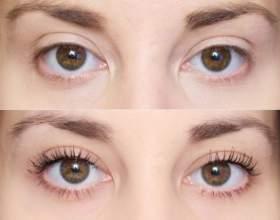 Фото «до» і «після» фарбування брів хною фото