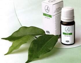 Як лікувати прищі на обличчі за допомогою олії чайного дерева? фото