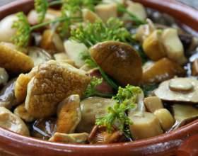Як солити білі гриби? Рецепти солоних білих грибів фото