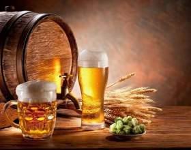 Як варити пиво в домашніх умовах: особливості технології пивоваріння та рецепти фото