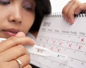 Коли настає вагітність після овуляції? Як дізнатися, чи відбулося зачаття? фото