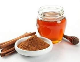 Кориця з медом: корисні властивості, шкоду і протипоказання. Як приготувати мед і корицю для чищення судин, схуднення та інших цілей? фото
