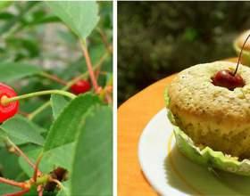 Мафіни з ягодами - швидко, смачно, корисно фото