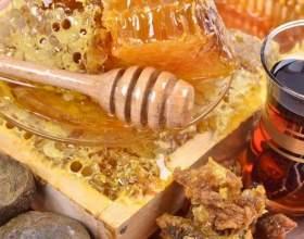 Мед з прополісом: корисні властивості та протипоказання. Як його правильно приймати? фото