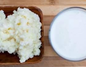 Молочний гриб: як доглядати? Молочний гриб: як виростити з нуля? фото