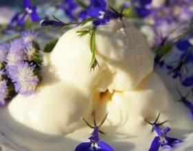 Морозиво пломбір в домашніх умовах фото