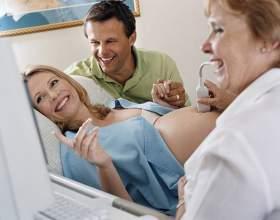 На якому терміні показує узі вагітність і стать дитини? Види ультразвукової діагностики фото