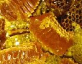 Бджолиний забрус: користь і властивості фото