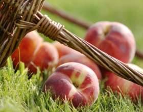 Персикове масло: застосування і властивості фото