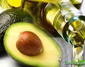 Користь масла авокадо для волосся фото