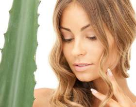 Застосування соку алое для зміцнення і освітлення волосся фото