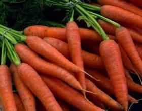 Рецепти морквяних масок від прищів фото