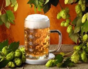 Рецепти на основі пива - готуємо для чоловіків фото