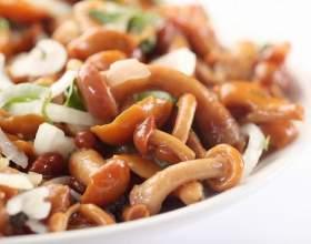 Салати з маринованими опеньками, шинкою, куркою, беконом: рецепти з фото фото