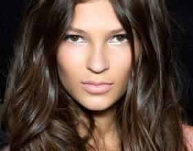 Шоколадний колір волосся 10 фото фото