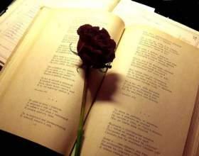 Вірші коханому хлопцеві про кохання. Оригінальні рядка для визнання фото