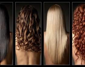 Будова волосся та види фото