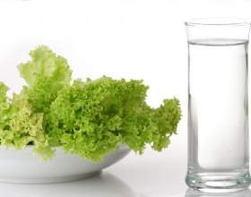Худа дієта. Особливості меню на 7 і 20 днів, відгуки та результати схуднення фото