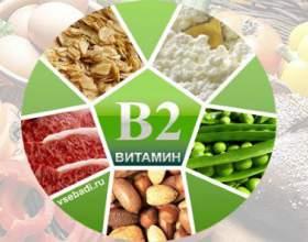 Вітамін b2: в яких продуктах міститься фото