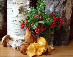 Смачні страви з грибів фото
